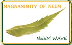 Neem Wave